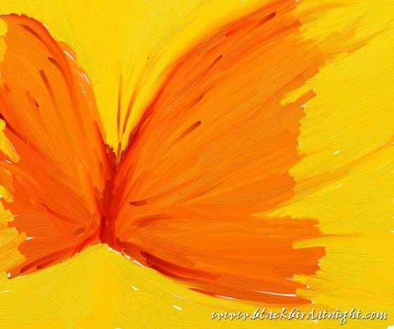 Wings of Crepe © 2012 Jane Waterman
