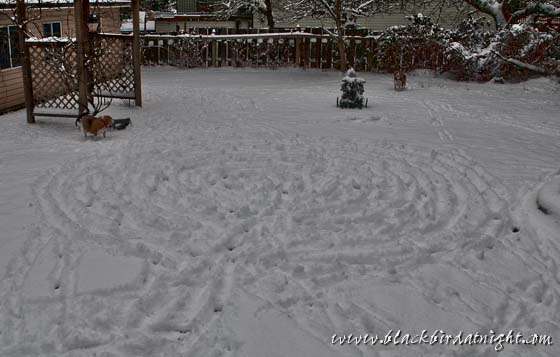 Snow Labyrinth (for Clare)