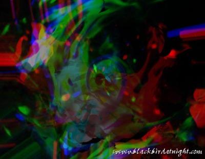 Ghost in the Machine © 2002 Jane Waterman