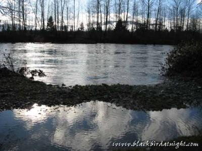 Flooded © 2009 Jane Waterman